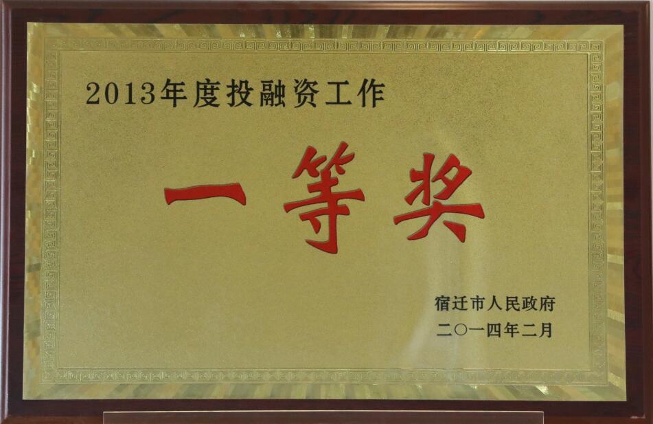 2013年度投融资工作一等奖